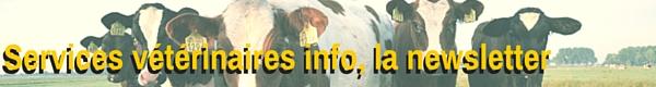 Services vétérinaires info titre neutre veaux